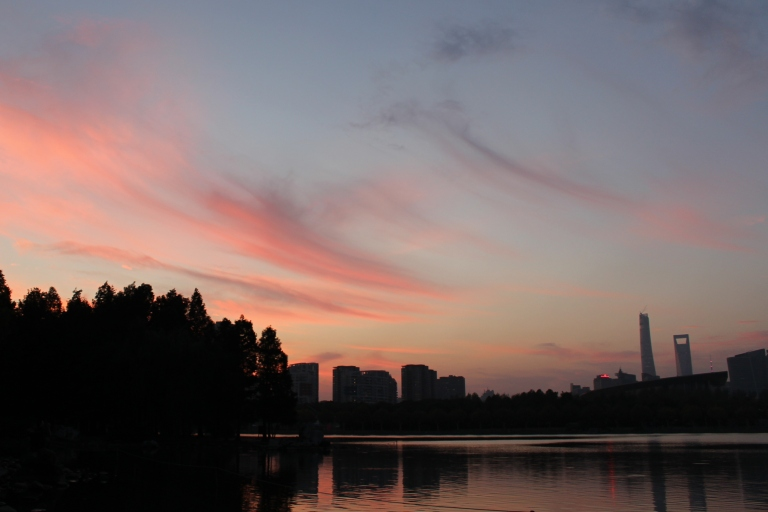 Sunset in Century Park